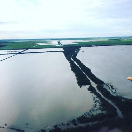 Lavouras de soja alagada na região de Uruguaiana