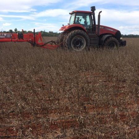Com muitas chuvas, produtores começam a plantar milho por cima da soja - Foto: Reprodução/Redes Sociais