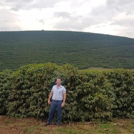 Pós Florada lavoura de café em Matipó (MG). Envio de Léo Gardingo