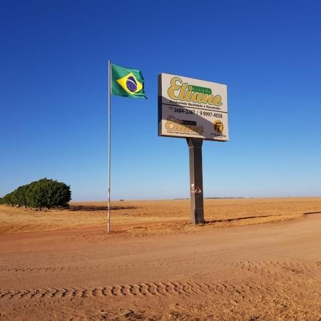 7 de Setembro - Fazenda Eliane Oeste da Bahia - São Desidério (BA).