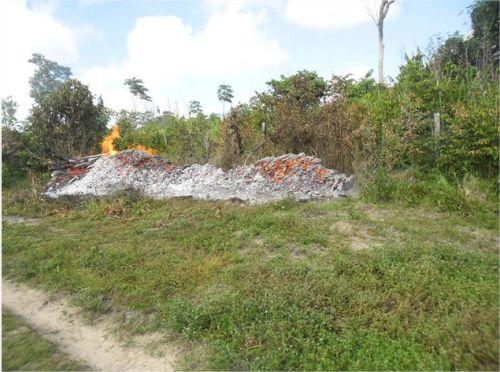 demarcação da área indígena AWÁ-GUAJÁ 4