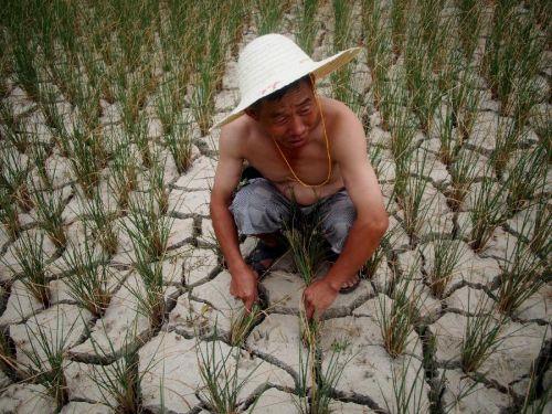 Seca na China 3
