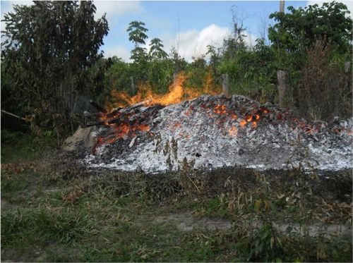 demarcação da área indígena AWÁ-GUAJÁ 9
