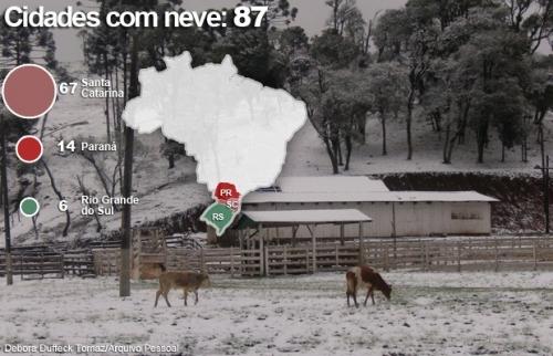 Neve no Sul - Foto G1