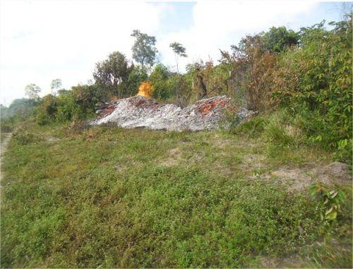demarcação da área indígena AWÁ-GUAJÁ 3