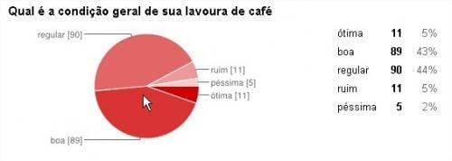 condiçoes_lavoura_cafe_enquete_24.06