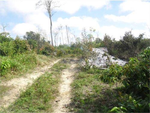 demarcação da área indígena AWÁ-GUAJÁ 7