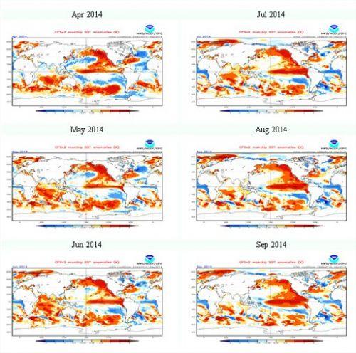 Perspectivas de El Niño - Imagens: NOAA