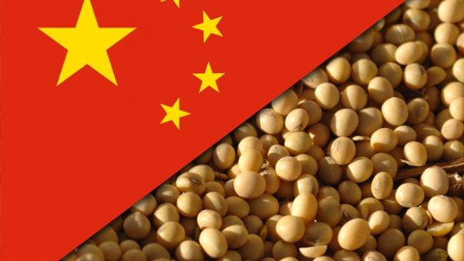 Soja China