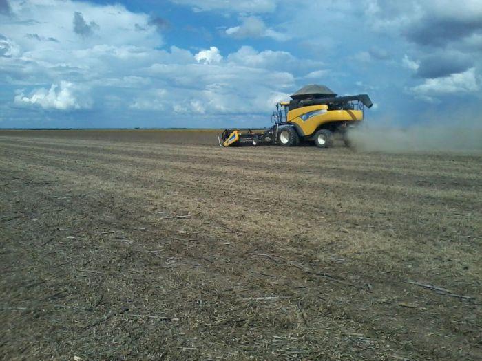 Imagem do Dia - Colheita de soja na Fazenda Jibóia em Unaí (MG), do produtor Theodorus Sanders