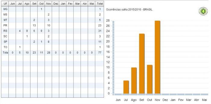 Ferrugem em números safra 2015/16
