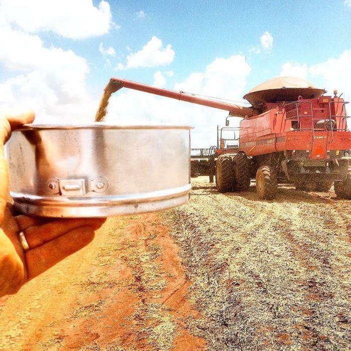 Imagem do Dia - Colheita de soja em Pedro Juan Cavallero (PY), do produtor Cristian Thiago Eidt