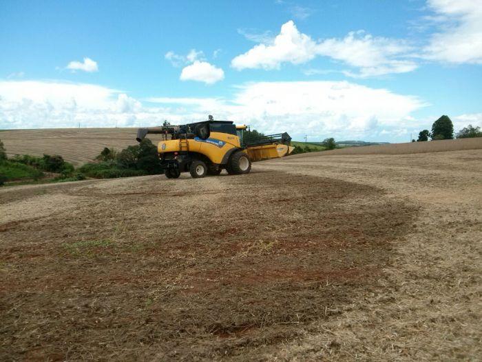 Imagem do Dia - Colheita de soja em São João (PR), na fazenda Hartman, envio do Técnico Agrícola Eder Groff