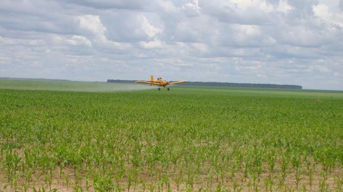Imagem do dia - Pulverização aérea em milho safrinha em Jaborandi (BA). Envio do engenheiro agrônomo Armando Ayres de Araujo