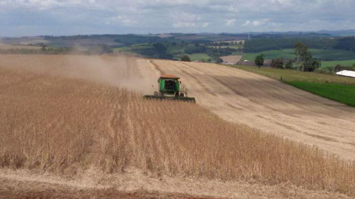 Imagem do dia - Colheita de soja em Bom Sucesso do Sul (PR), do produtor Flávio Lavrati.