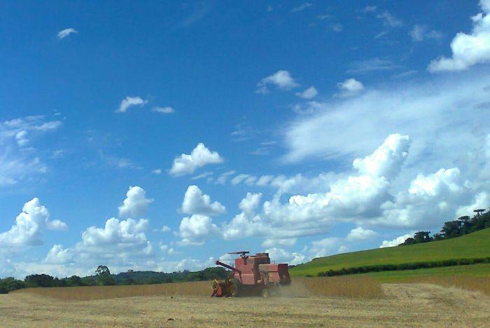 Imagem do Dia - Colheita de soja em  Marau (RS), do produtor Carlos A. Serafin