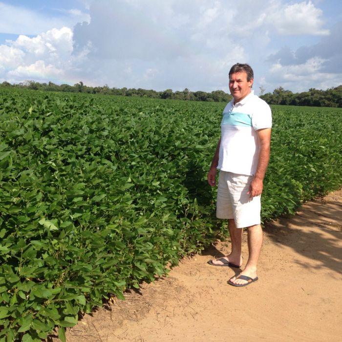 Imagem do Dia - Lavoura de soja na Fazenda Santo Expedito  em em Querência (MT), do produtor de Márcio Luiz Pizzolatto.  Envio de Deliana Perin Pizzolatto