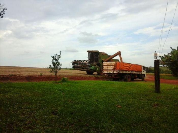 Imagem do dia - Colheita da soja safrinha em Cedrales (PY), do produtor rural Cosme Meurer