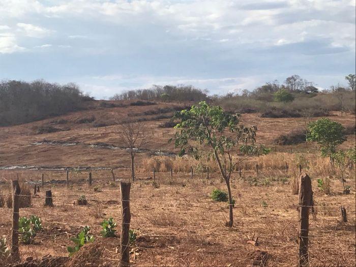 Áreas da BA sem irrigação 2