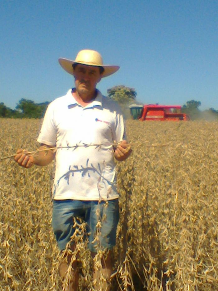Imagem do dia - Colheita de soja em Pérola DOeste (PR), do produtor Celvino de Conti.