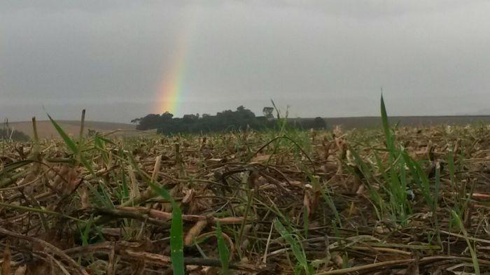 Imagem do Dia - Imagem em Tapejara (RS), envio de  Vinicios Marcon