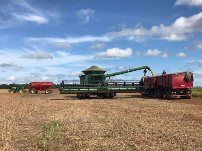Colheita da soja em Sorriso (MT). Envio de Luimar Gemi