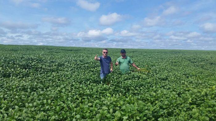 Imagem do dia - Lavoura de Soja em Sítio dAbadia (GO). Foto enviada pelo produtor rural Júlio Tobio 3