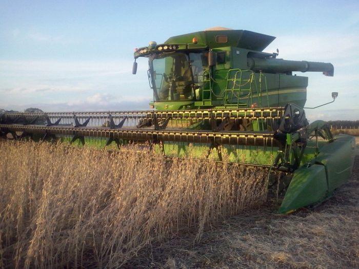 Imagens do Dia - Colheita de soja em São Sepé (RS), na granja Baixo Grande. Imagens de Paulo Bolzan