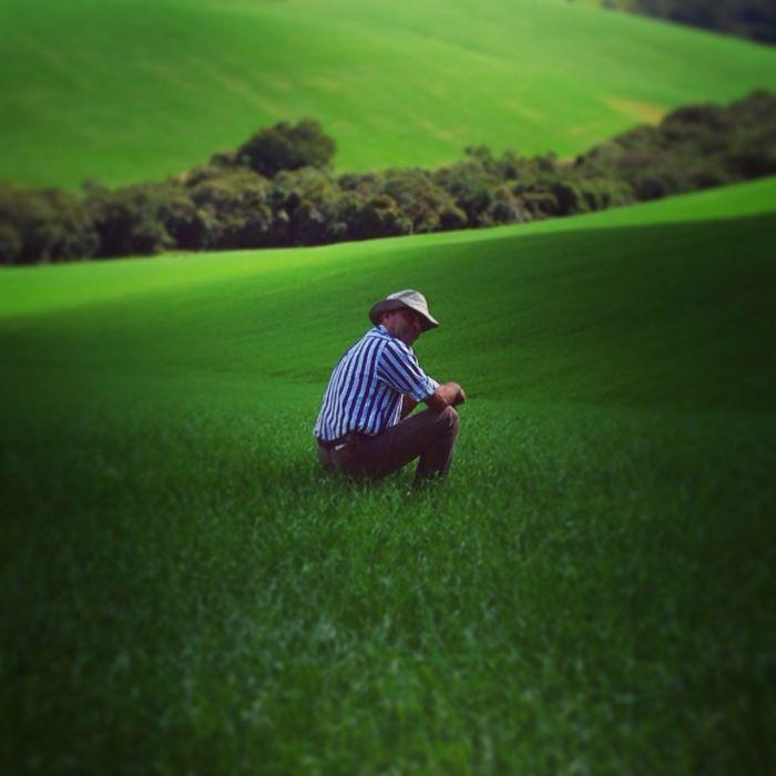 Imagem do Dia - Engenheiro Agrônomo Vlamir Leggieri no trigo em Carmo de Minas (MG)