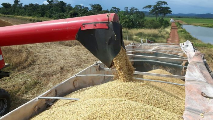 Colheita de soja em Vila Rica (MT), na Fazenda Bom Descanso