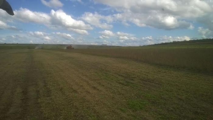 Imagem do dia - Colheita da soja em Uberaba (MG), na Fazenda Teimosa, do produtor Seabra