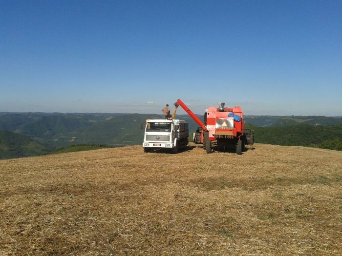 Imagem do Dia - Colheita de soja em Sobradinho (RS), na propriedade de Ivo Busatto