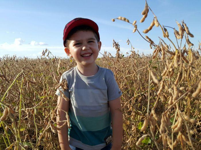 Imagem do dia - Mário Henrique Neves na colheita de soja em Catalão (GO), na Fazenda Santa Rita