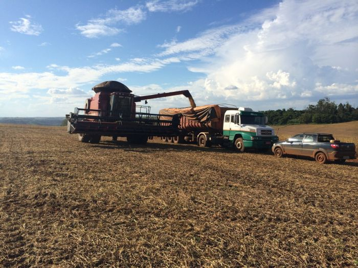 Imagem do dia - Colheita de Soja em Santa Amélia (PR), na Fazenda Taji do produtor rural Yasushi Taji 2