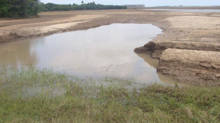 Imagem do dia - Área de plantio de arroz após enchente na região de Restinga Seca (RS). Envio do produtor Flávio Giuliani
