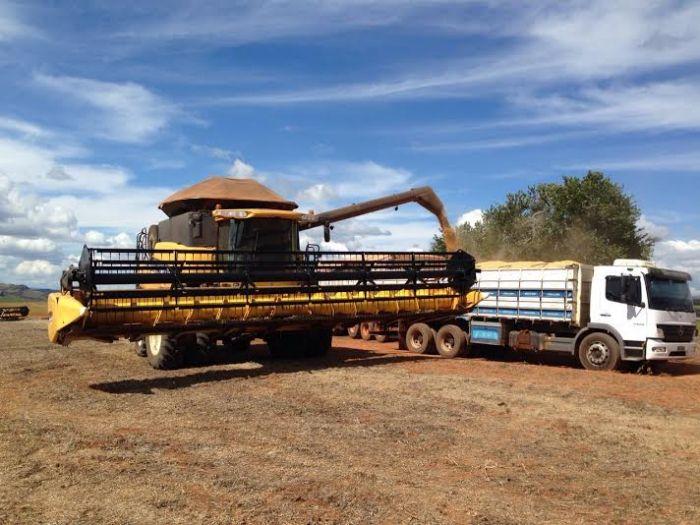 Imagem do dia - Colheita da soja em Luminárias (MG), na Fazenda Pagagaio, do produtor Fábio e Ademar Caixeta