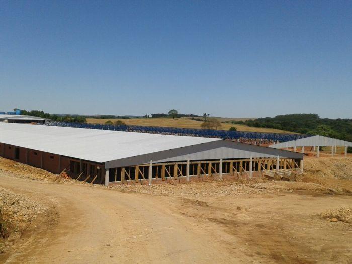 Imagem do Dia - Estrutura da Agrodanieli de Tapejara (RS), com aviários de 150mx30m, envio do  Engenheiro Agrônomo Gustavo Dos Anjos.