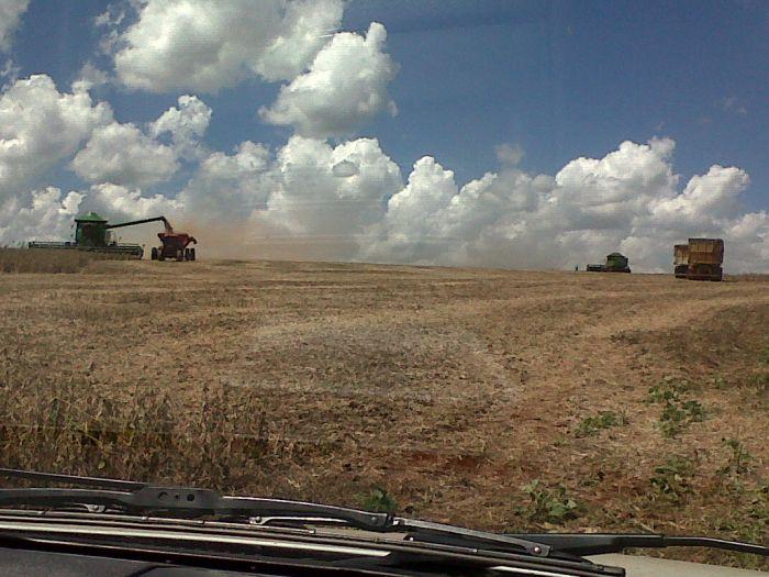 Imagem do dia - Colheita de soja em Santo Augusto (RS), produtor Gilberto Luiz.