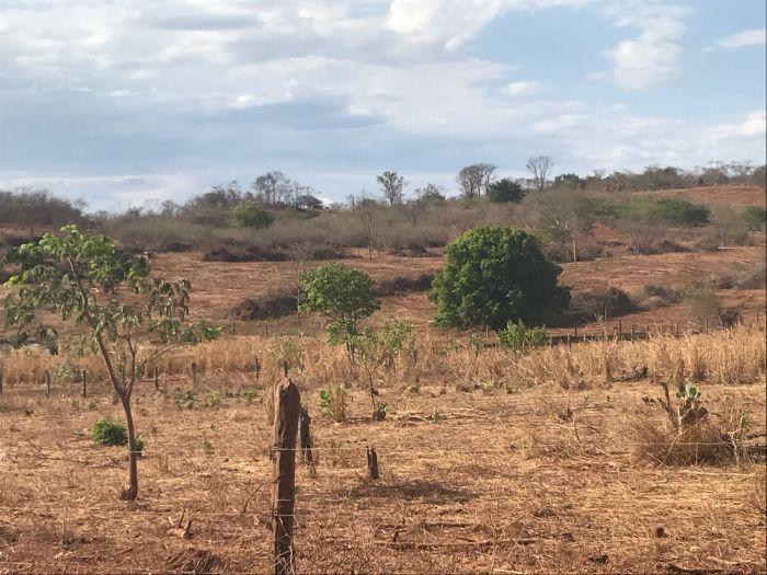 Áreas da BA sem irrigação 1