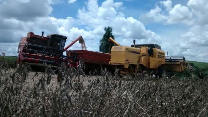 Foto da colheita da soja em Verê (PR). Imagem do produtor rural, Eloir Marcos Maculan.