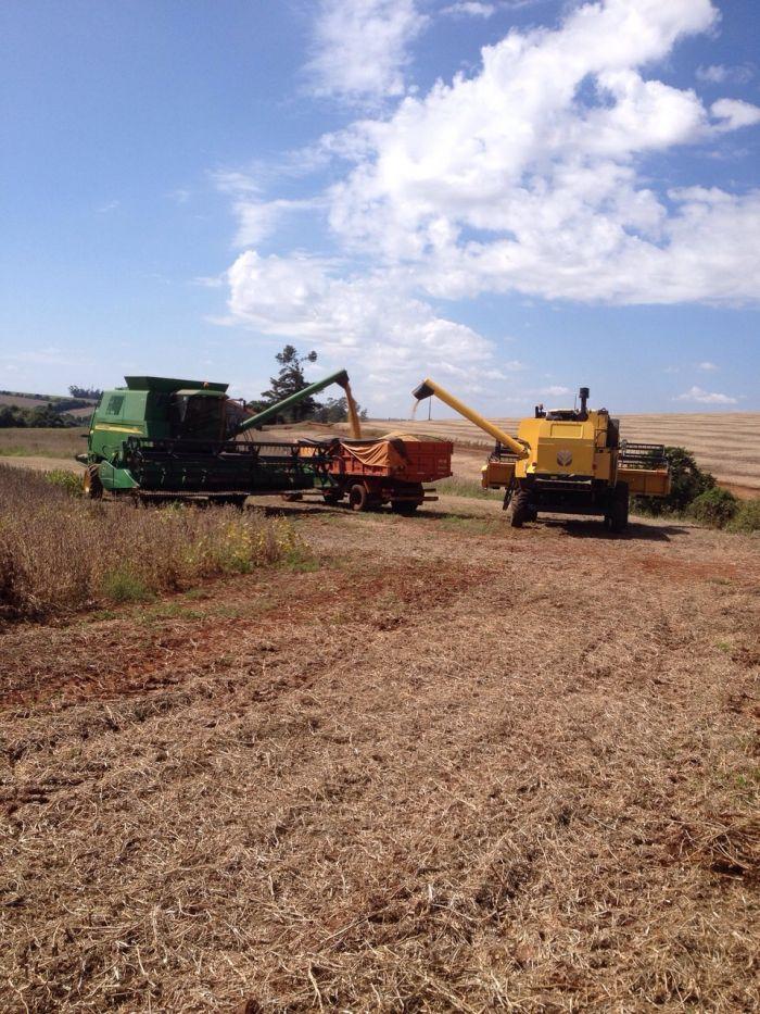 Imagem do Dia - Colheita de soja em Mauá (RS), na agropecuária São Guilherme
