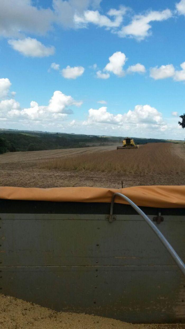 Imagem do Dia - Colheita de soja em Mato Castelhano (RS), do proprietário Dirceu Vailati