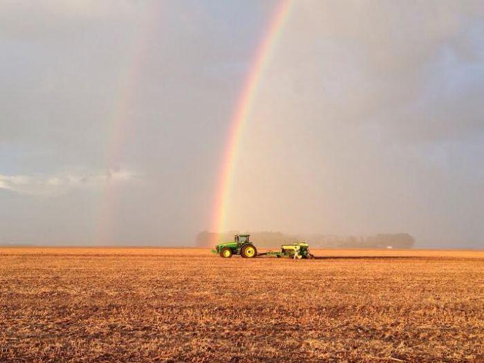 Imagem do dia - Plantio do milho safrinha em Chapadão do Sul (MS). Imagem do Grupo WDuch.