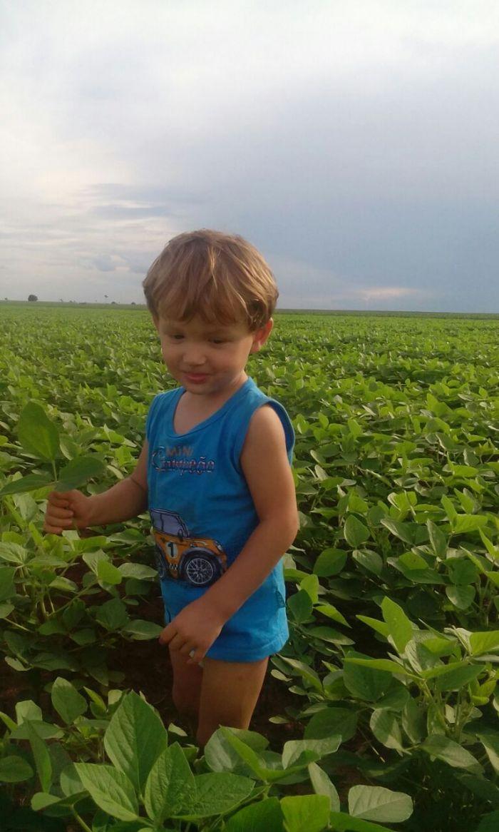 Imagem do dia - Lavoura de Soja em Iguatemi (MS), do produtor Lucas Miotto. Na foto seu filho Guilherme Miotto.