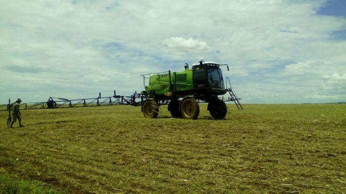 Imagem do dia - Colheita da soja em Toledo (PR)