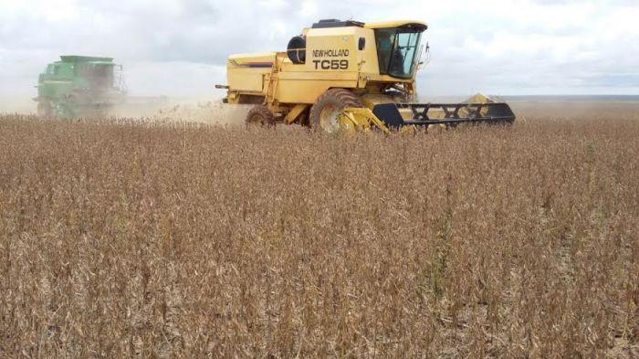 Imagem do dia - Colheita da soja na região de Comodoro (MT). Foto do produtor rural, Paulo César