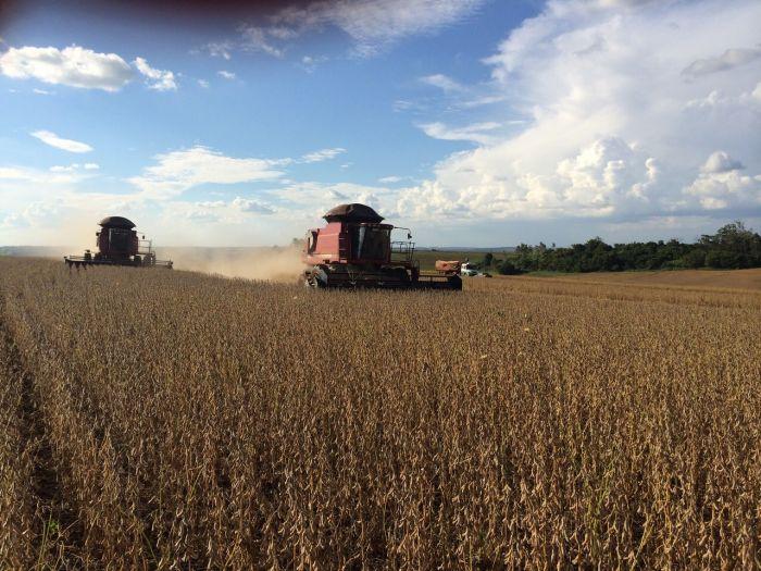 Imagem do dia - Colheita de Soja em Santa Amélia (PR), na Fazenda Taji do produtor rural Yasushi Taji.