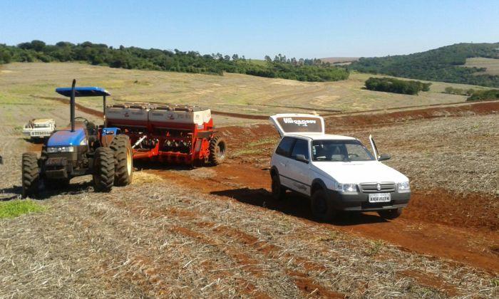 Imagem do Dia - Plantio de trigo em Borrazópolis (PR), do produtor Luiz Carlos de Oliveira