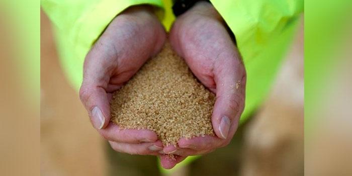 Trabalhador segura açúcar bruto nas mãos