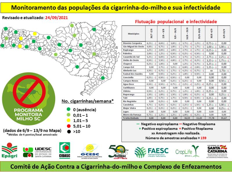 monitoramento cigarrinha milho santa catarina